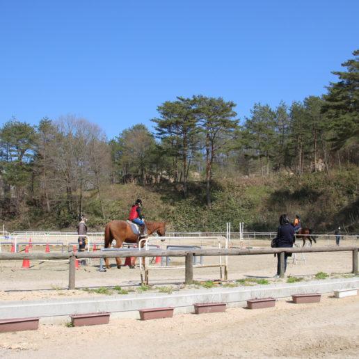 自然の中で乗馬を楽しめる。