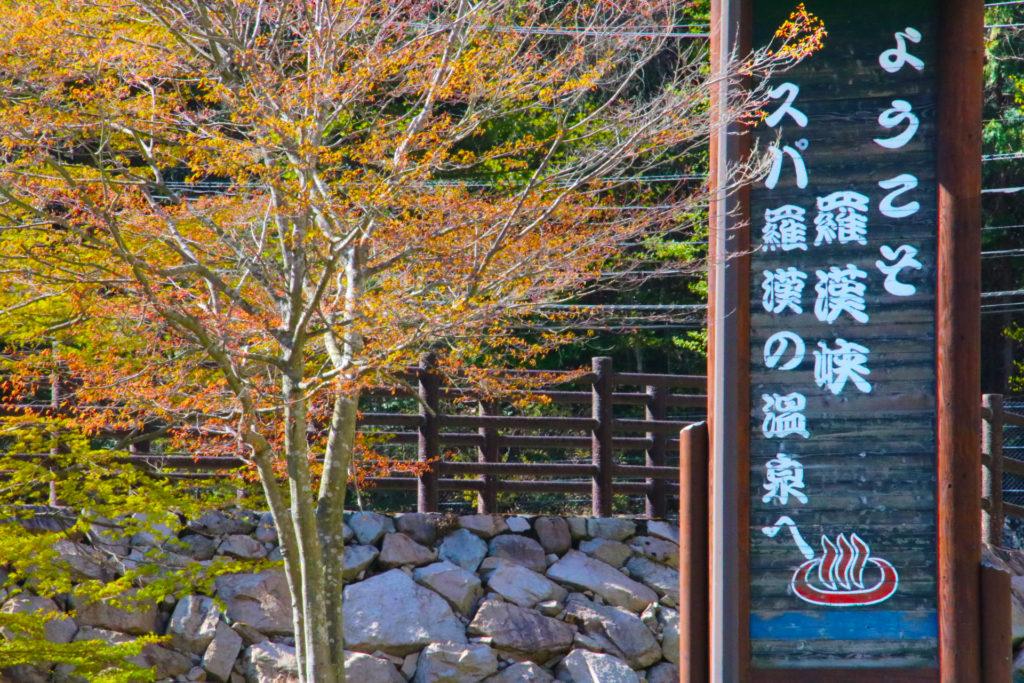 広島からドライブ観光で自然と温泉を楽しんで。夏休みのお出かけや秋の紅葉にも。