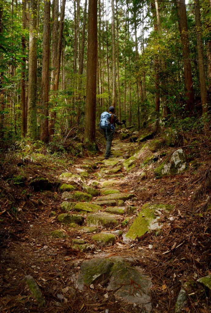 広島の歴史を物語る津和野街道は、歩ける観光スポット。