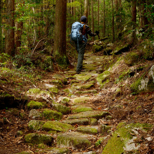 長崎の隠れキリシタンが歩いた津和野街道